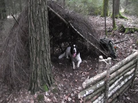 Building A Lean-To Shelter