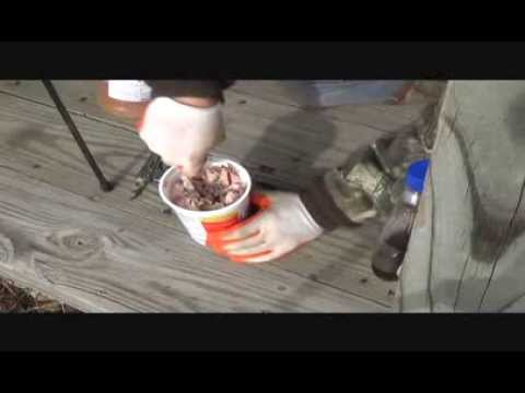 Homemade Coon Bait Options
