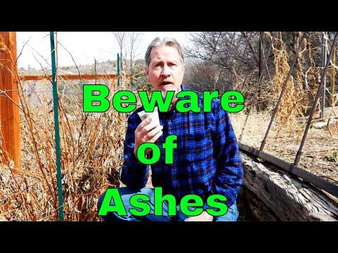 Understanding Wood Ash in the Garden - It's Not All Good