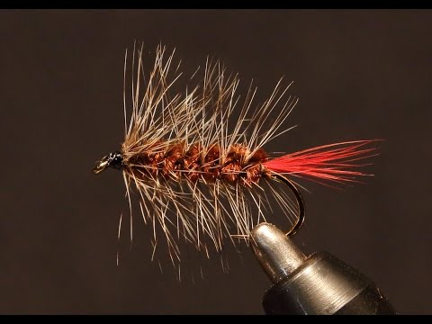 The Wooly Worm - #1 In My Beginning Fly Tying Series