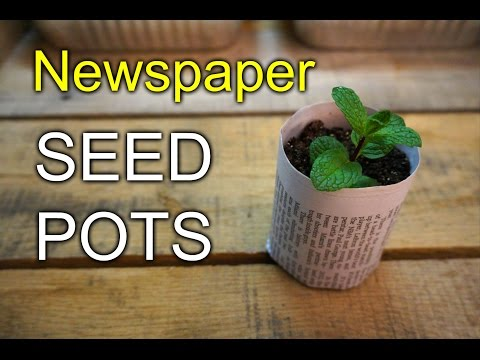 Seed Pots from Newspaper - How To
