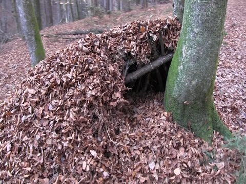 Building A Survival Shelter With Natural Materials