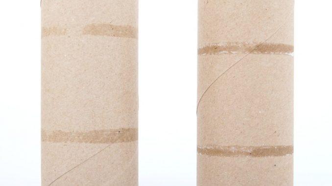 empty rolls of toilet paper
