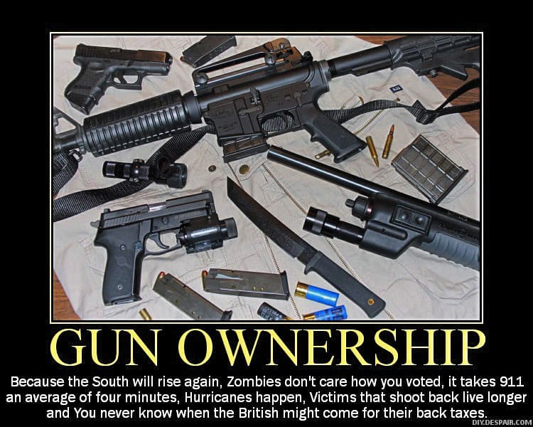 gun ownership