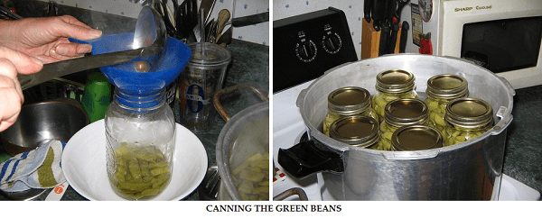 canning3