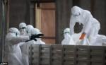Ebola-prep