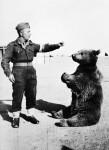 Wojtek_the_bear (1)
