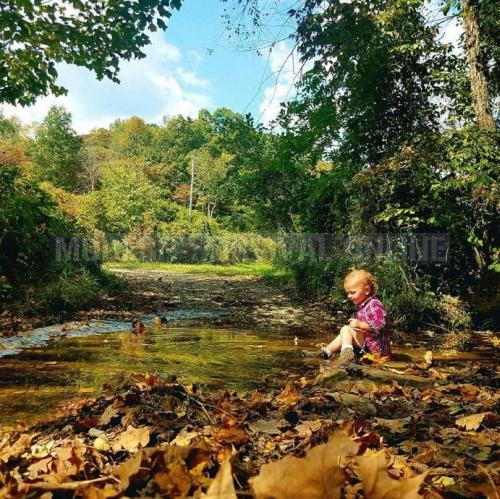 child near creek