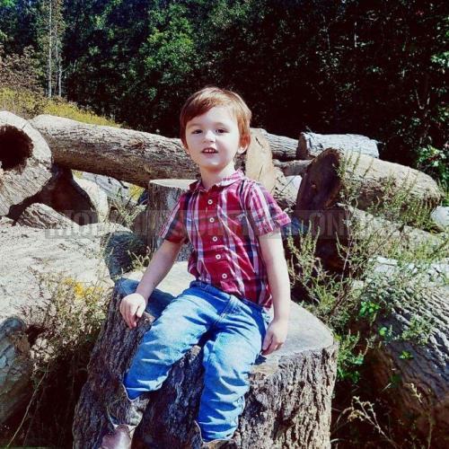 child on log