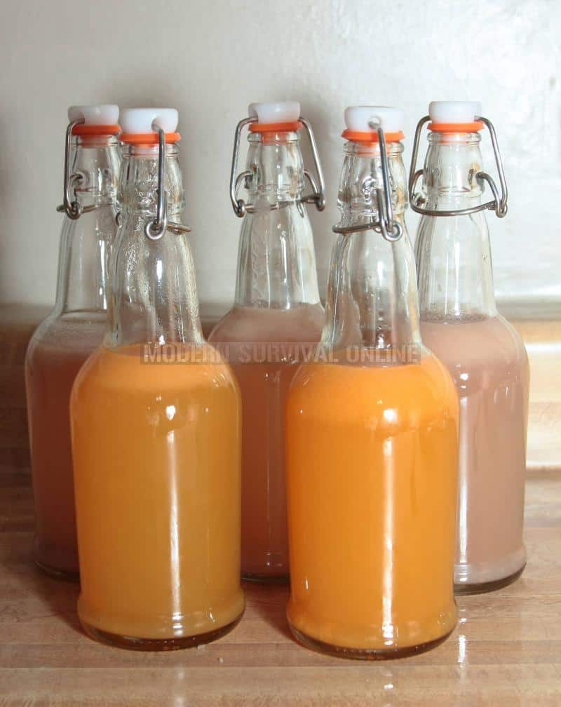 homemade soda ready for refrigeration