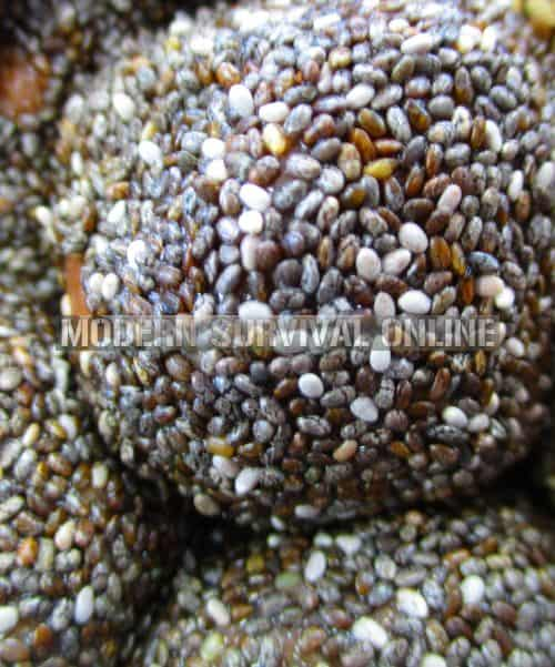 Chia ball closeup