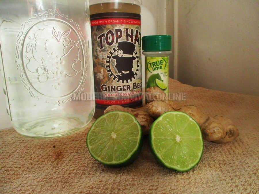 Ginger Lime Switchel