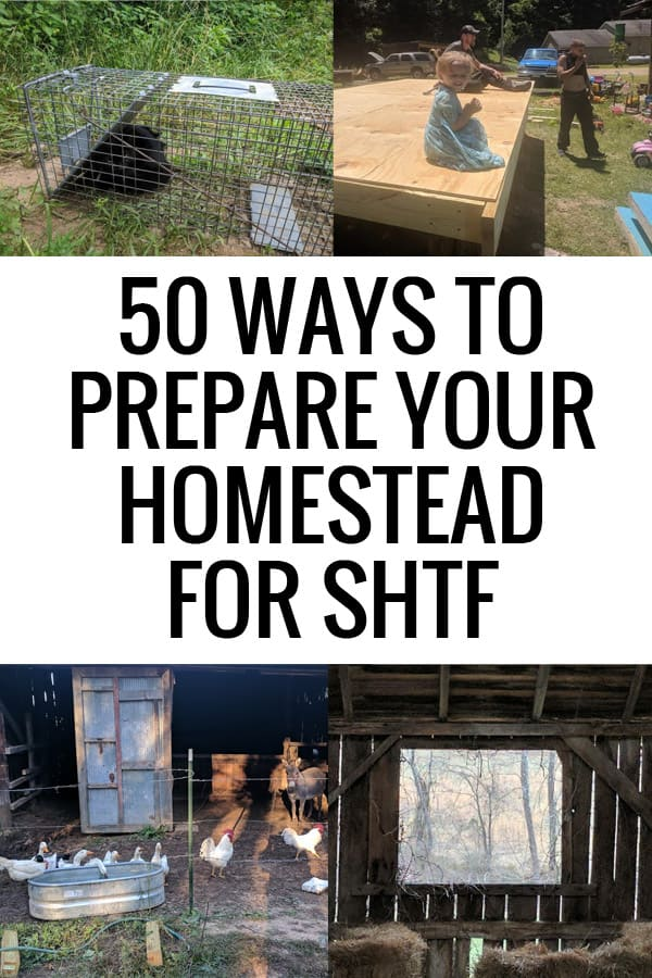 prepare homestead shtf featured