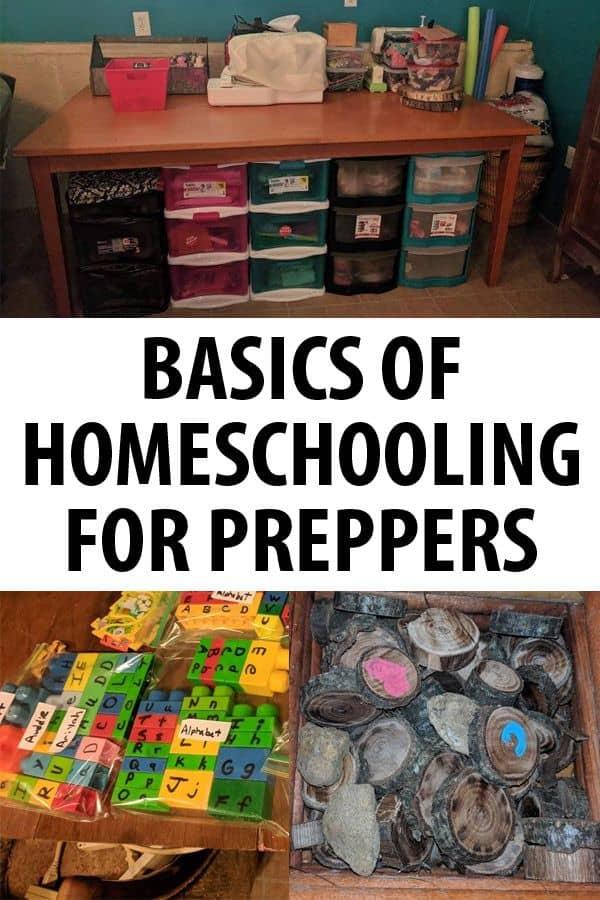 basics of homeschooling pin