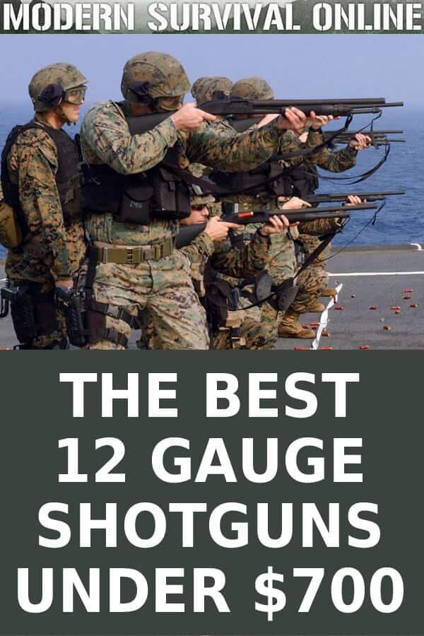 affordable 12 gauge shotguns pin