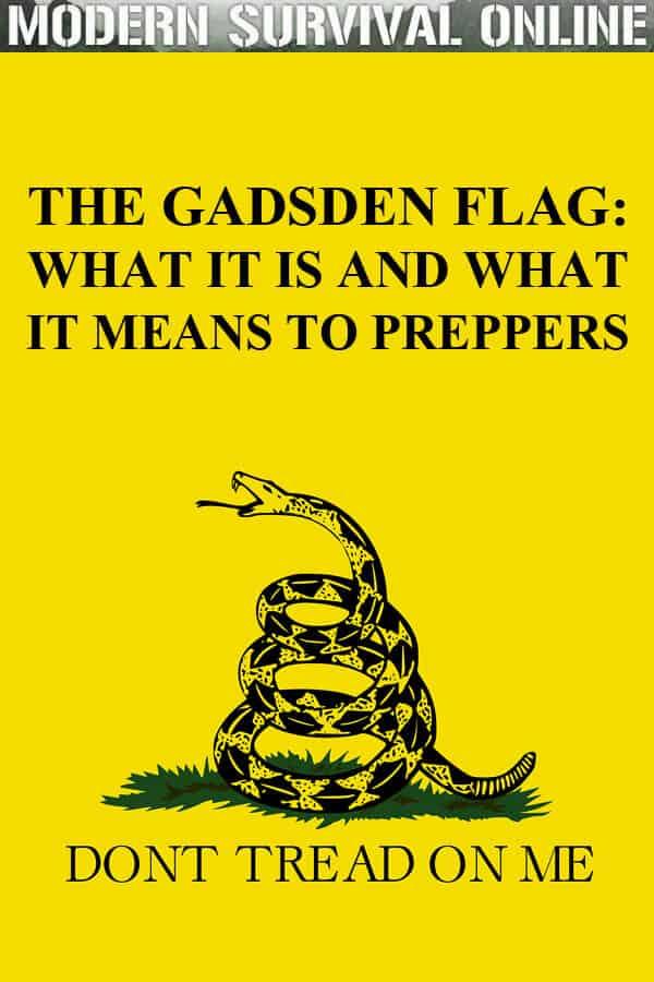 gadsden flag pinterest