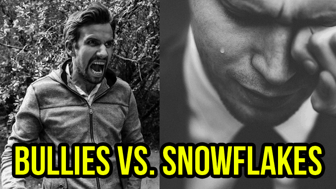 bullies vs. snowflakes featured