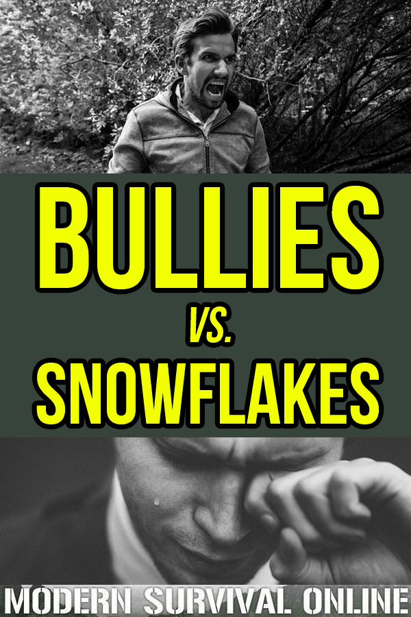 bullies vs. snowflakes pinterest image