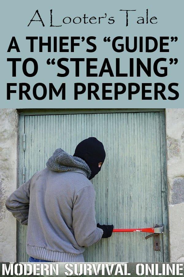 thiefs guide pinterest image