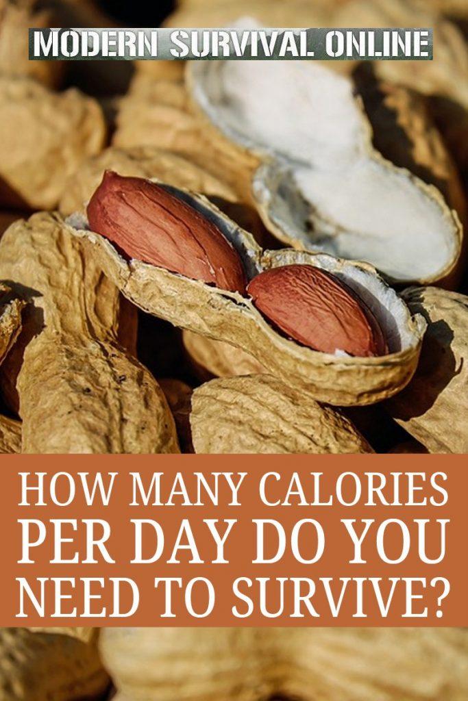 calories needed to survive pinterest