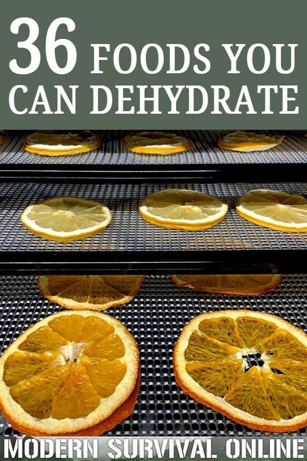 food dehydration pin