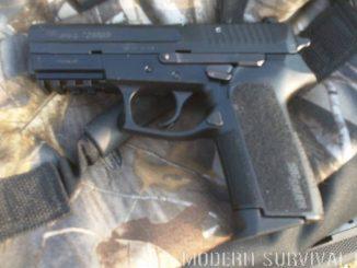 Sig Sauer 2022 9mm
