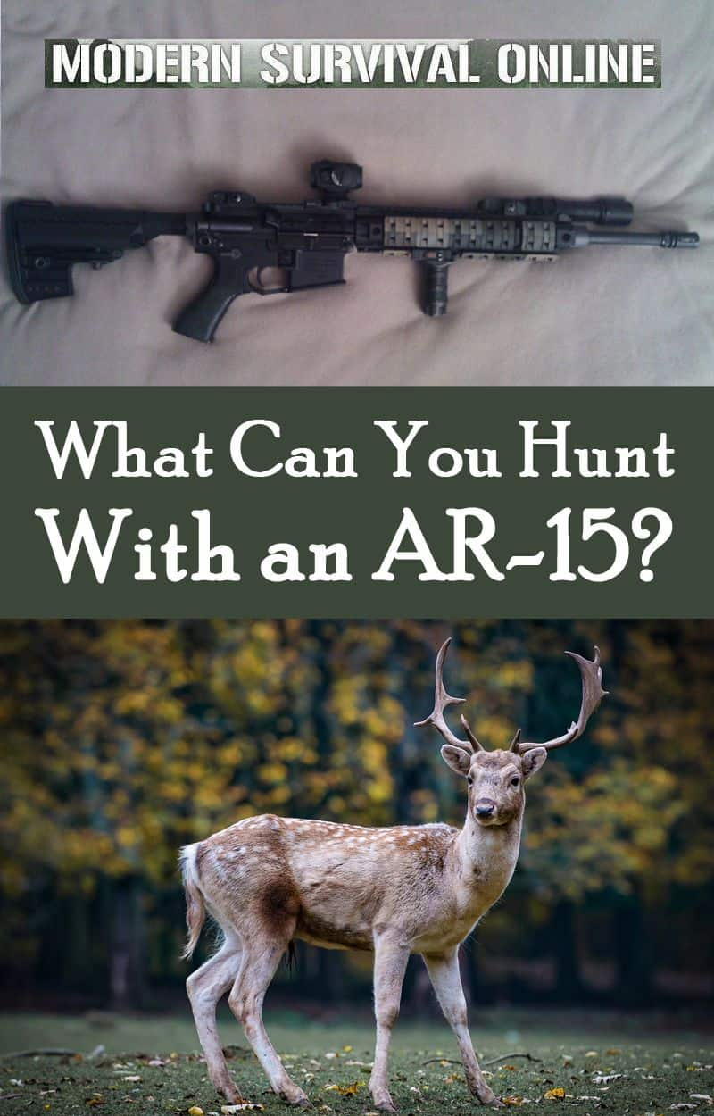 huting with ar15 pinterest
