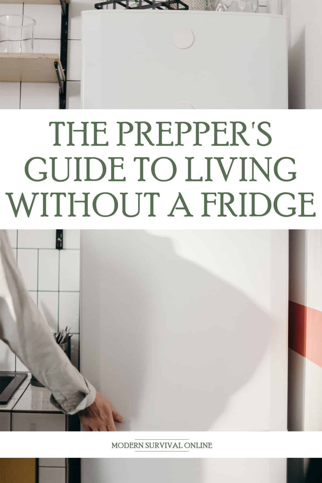 living without fridge pinterest image