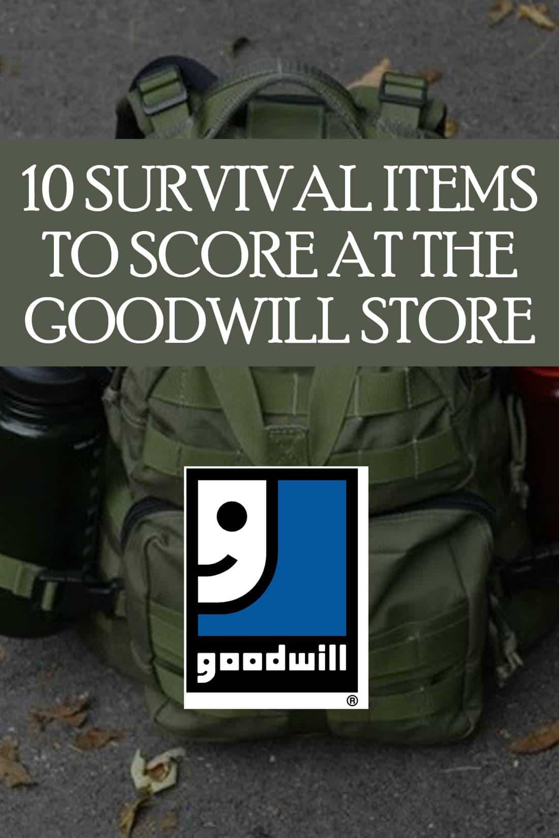 Goodwill store pin image