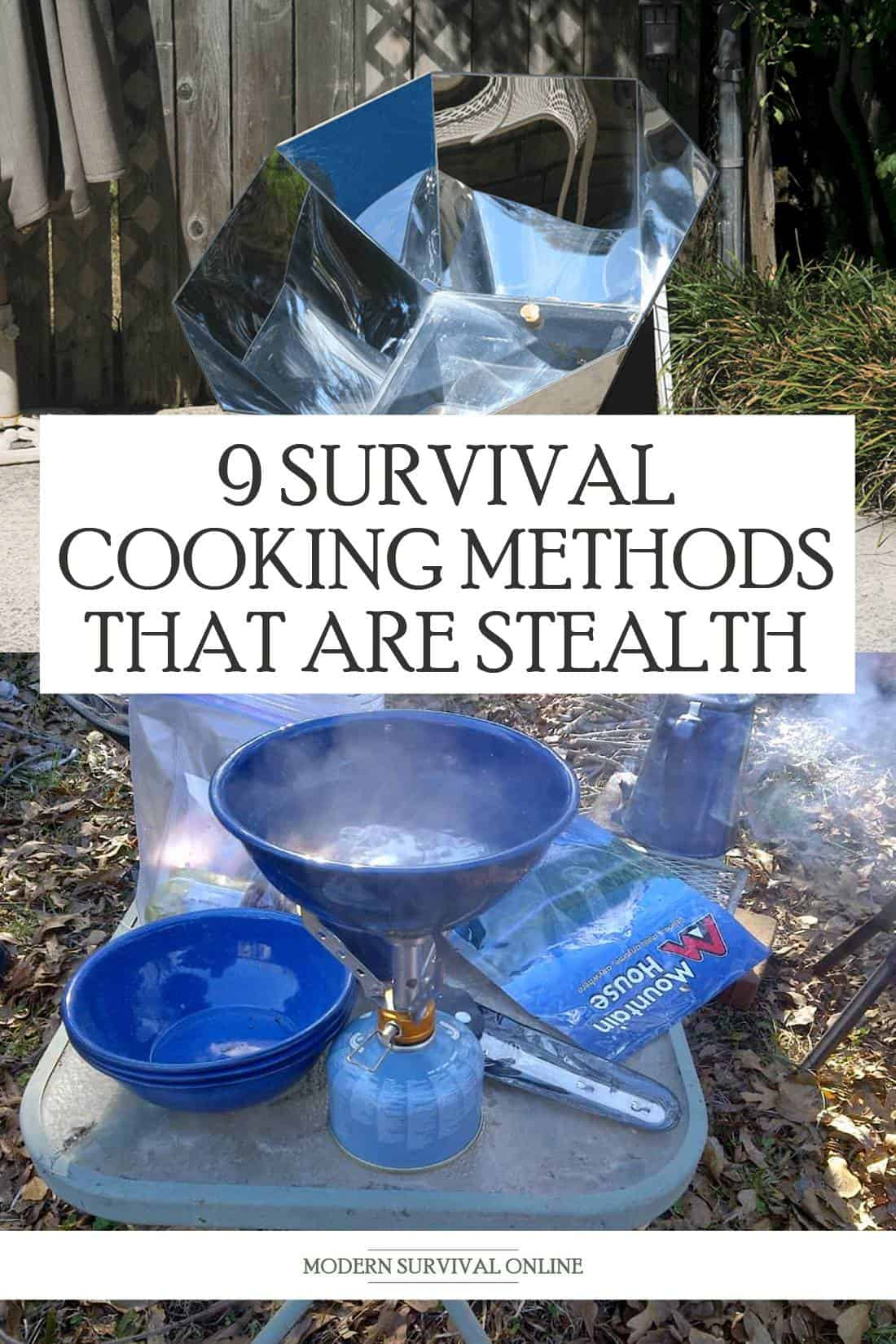 survival cooking pinterest image