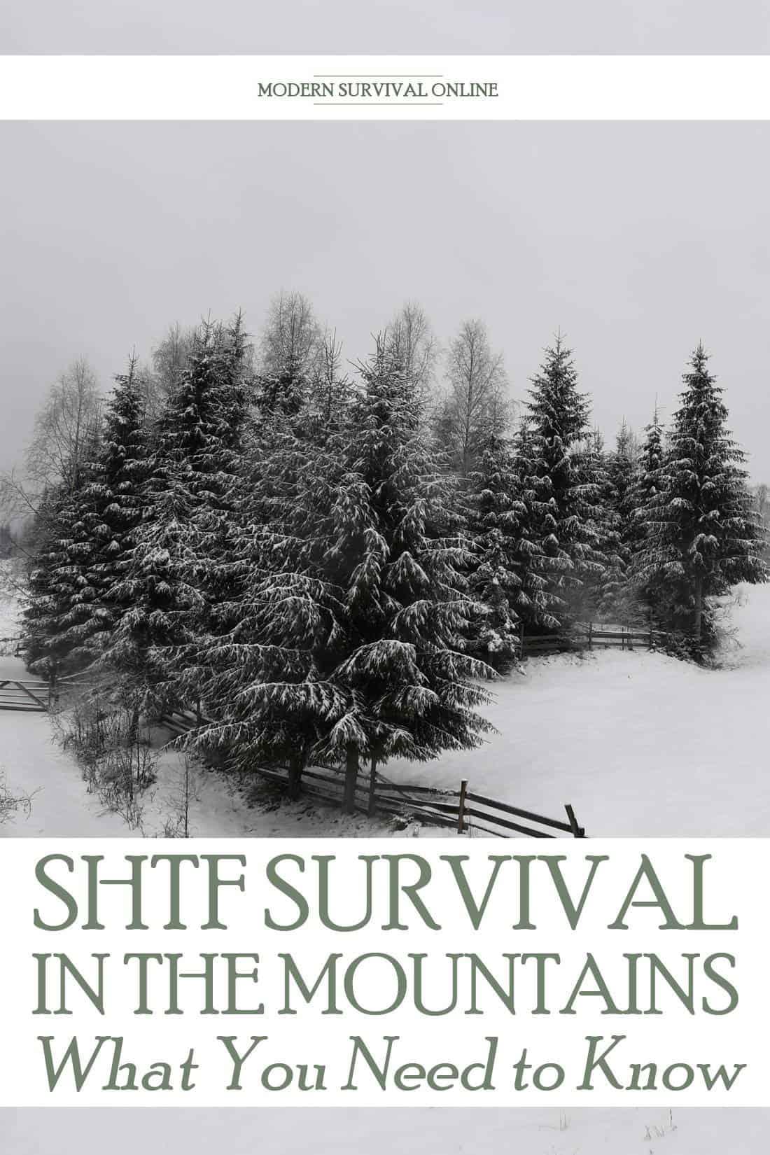 mountain survival pinterest image