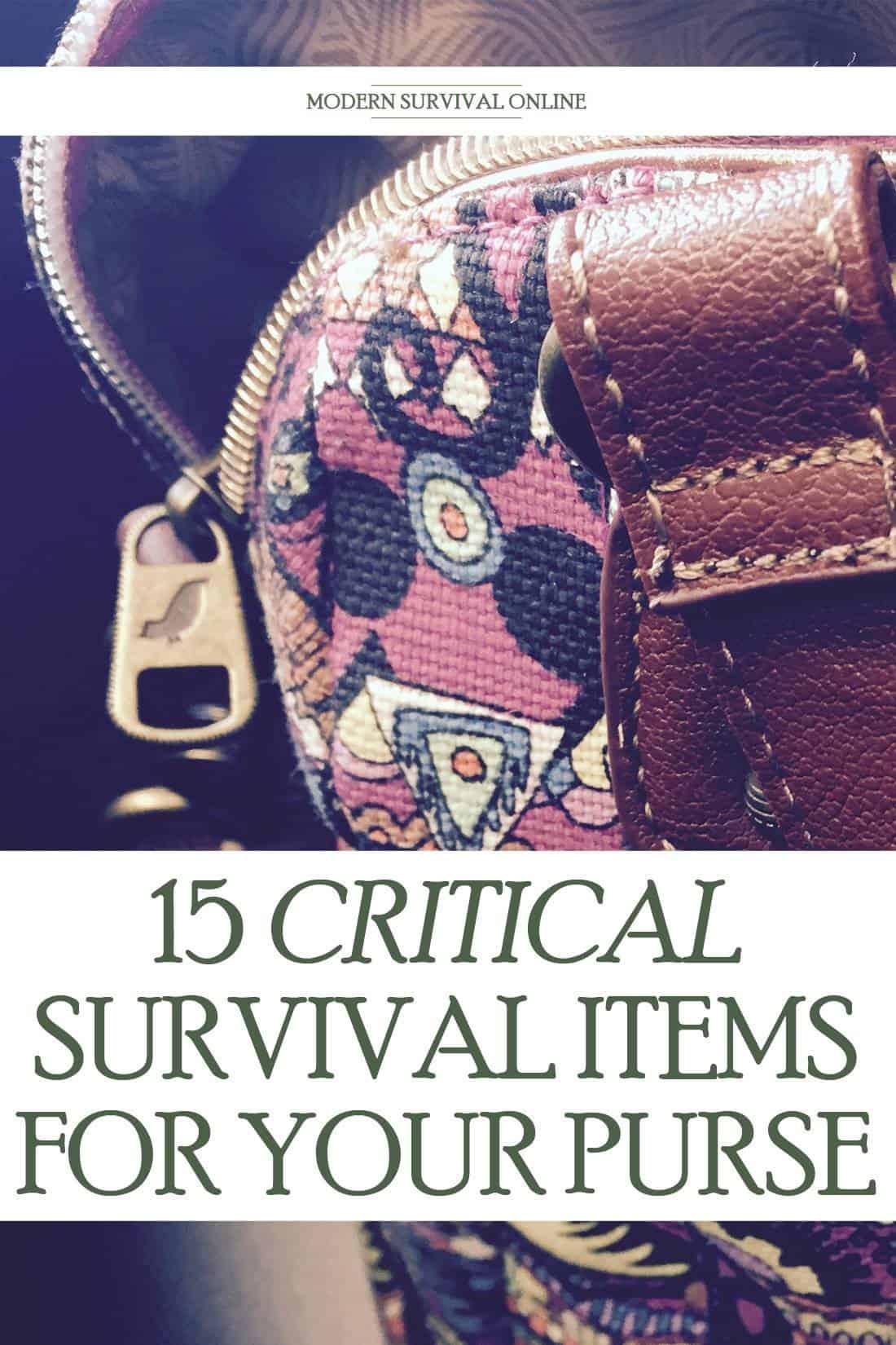 purse survival items Pinterest image