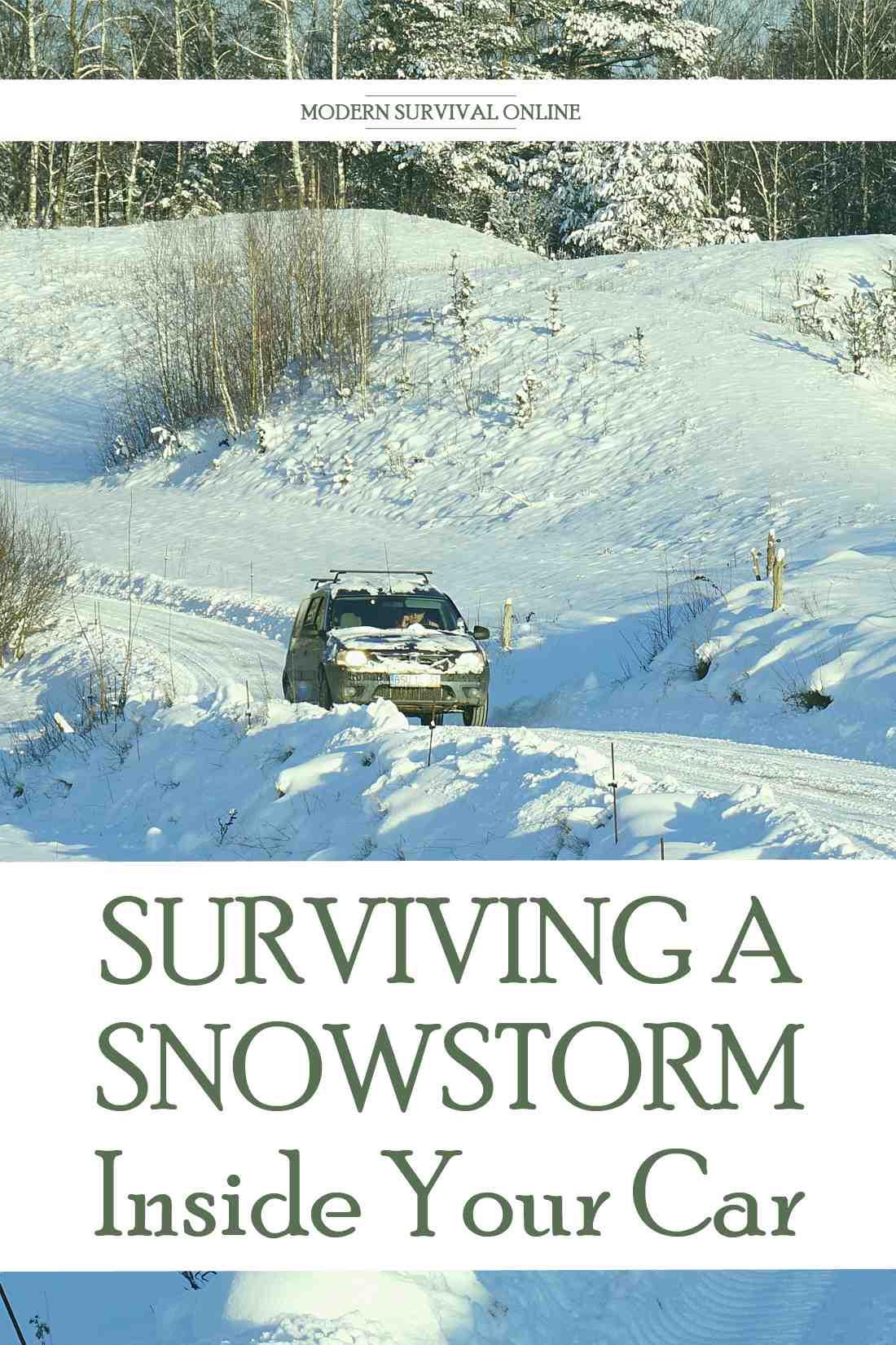 snowstorm survival Pinterest image